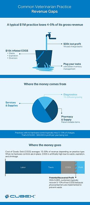 Leaky-Bucket-infographic